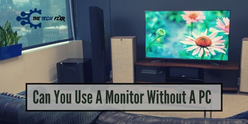 Can You Use A Monitor Without A PC