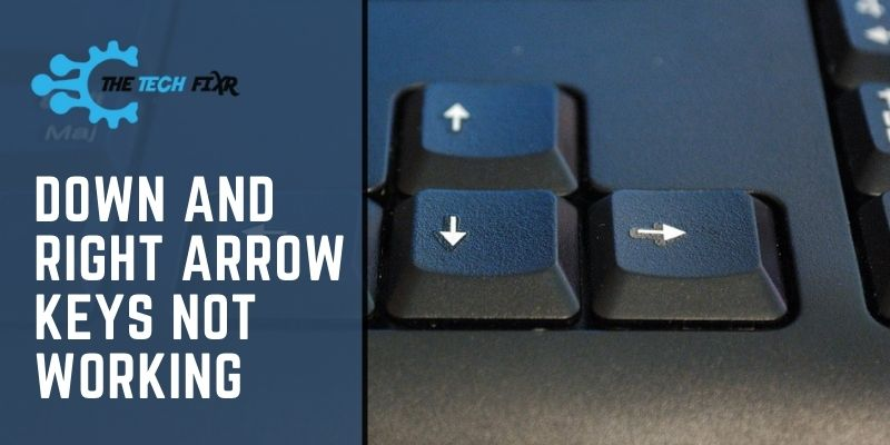 Down And Right Arrow Keys Not Working